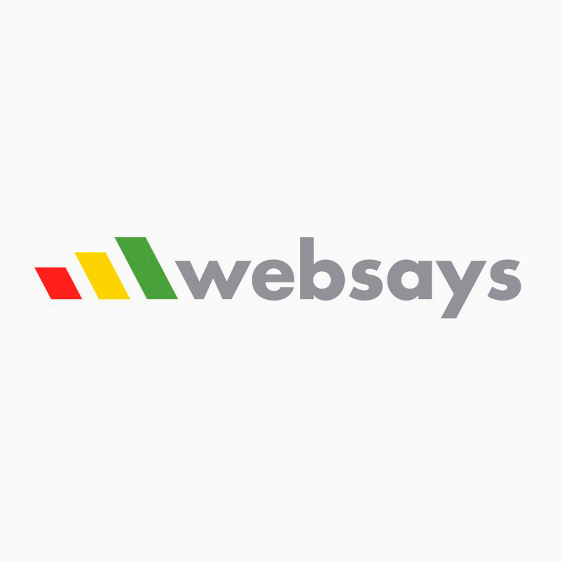 Websays (2016-2017)